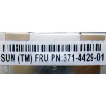 Серверная память SUN (FRU PN 371-4429-01) 4096Mb (4Gb) DDR3 ECC в Пуршево, память для сервера SUN FRU P/N 371-4429-01 (Пуршево)